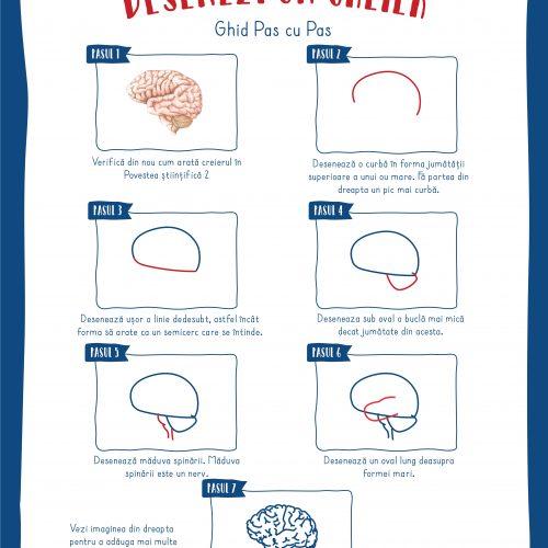 Poster: Cum sa desenezi un creier
